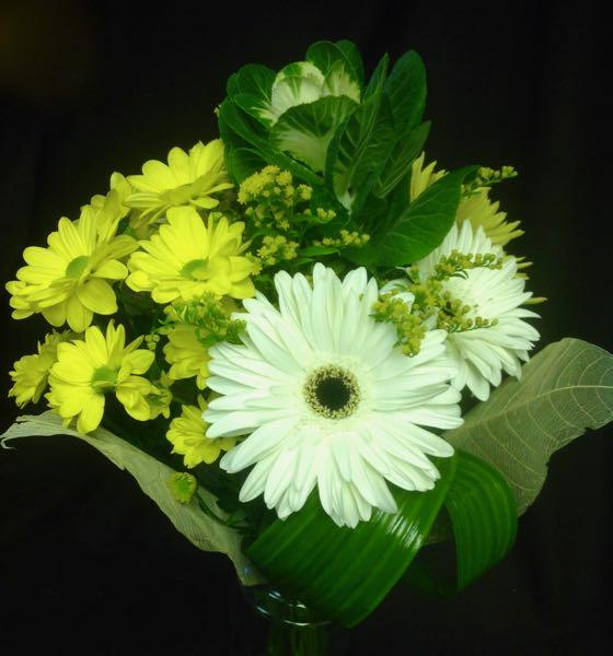Bouquet de fleurs. Un gros merci ! AE-26