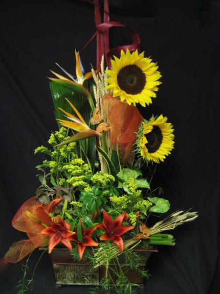 Des fleurs ensoleillées