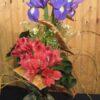 Fleurs de Mai ! AES-22