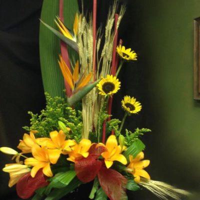 Corbeille de fleurs. Plein soleil ! FCO-51