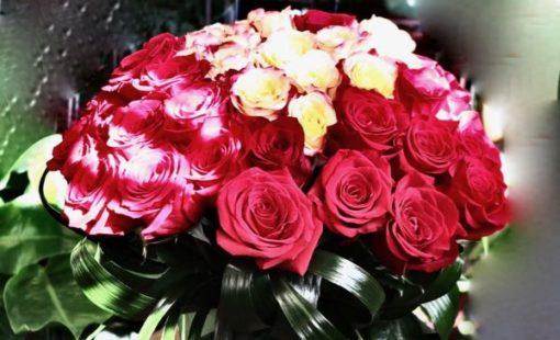 Boule d'amour en fleurs ! AO-21