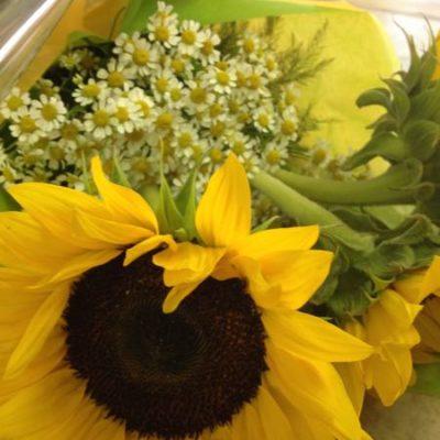 Bouquet fleurs, Soleil, soleil ! AE-36