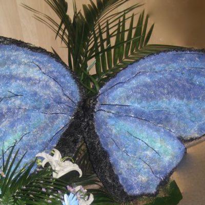 Papillon bleu ! FS-25